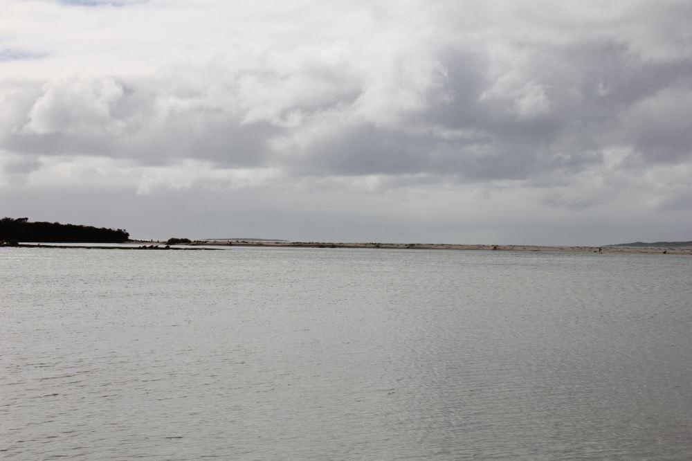 IMG_5108-ltl musselroe
