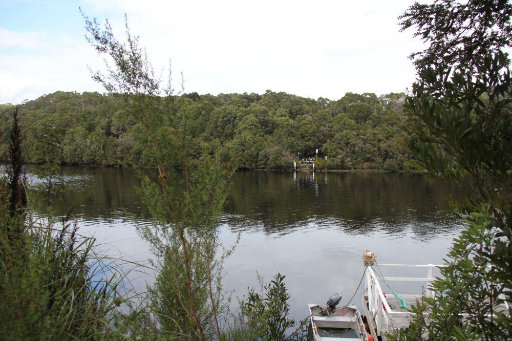 IMG_5205-pieman river