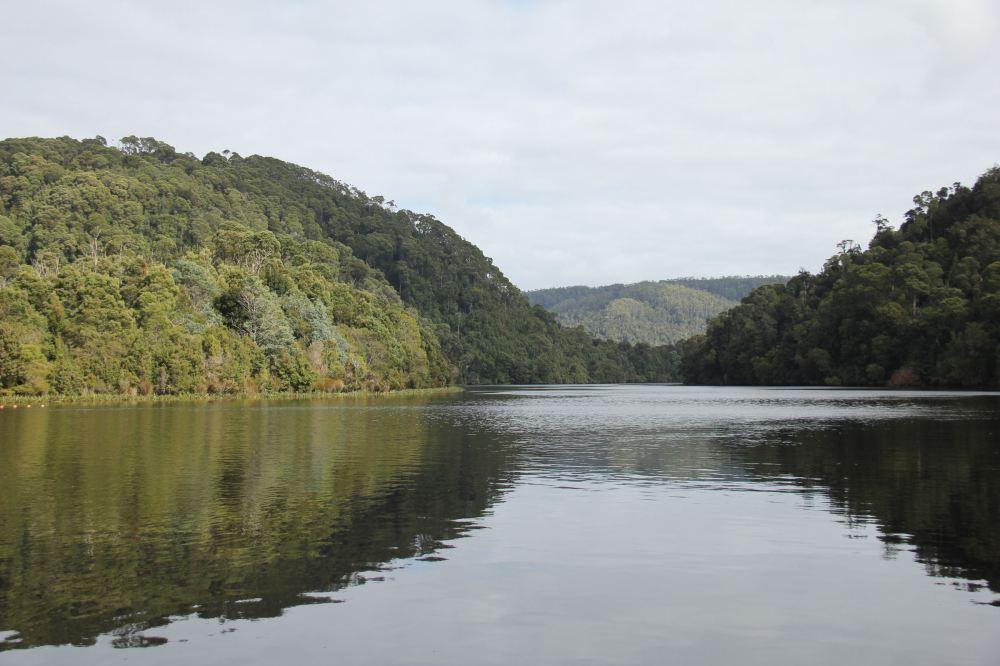 IMG_5211-pieman river2