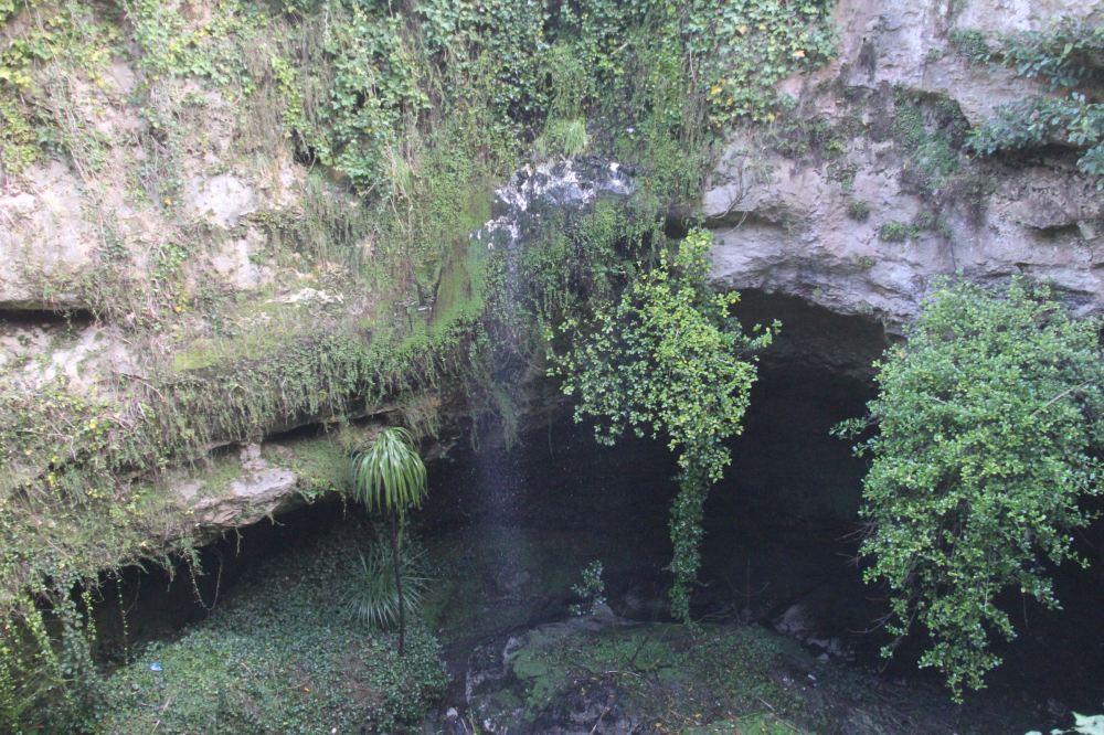 Cave Gardens